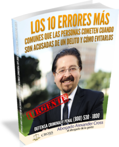 Los 10 Errores Ebook